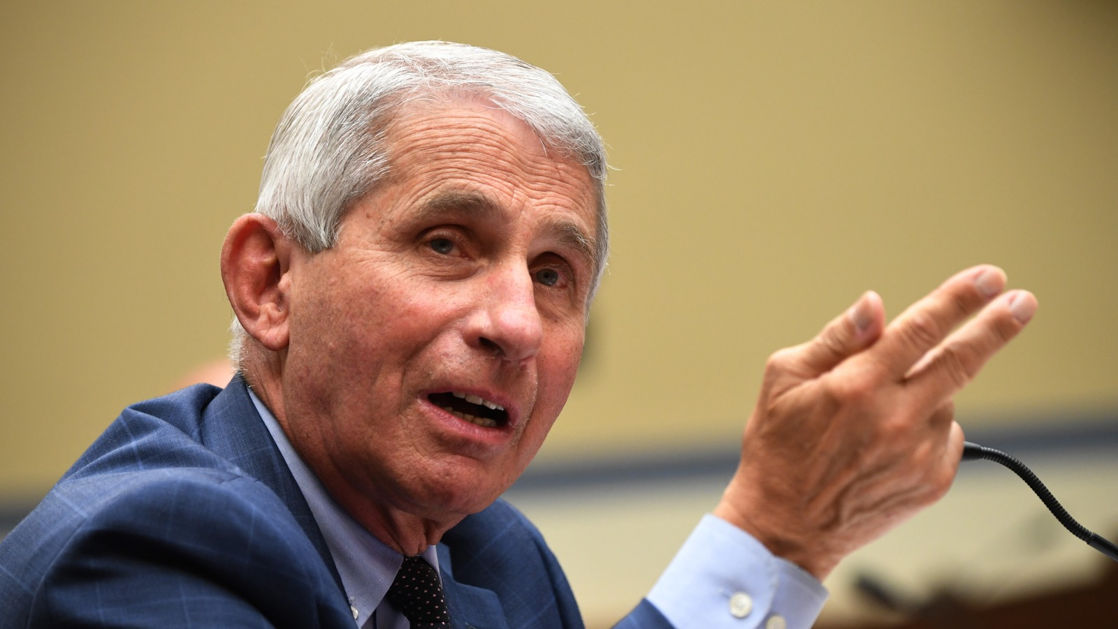 The Brainlessly Educated: How the Ongoing COVID-19 Plandemic and Dr. Fauci's Emails Unmasked America's Real Plague of Blind Stupidity and Submissive Sheeple